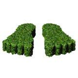 Pieds faits à partir des feuilles vertes d'isolement sur le fond blanc 3d rendent Photo stock