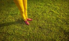 Pieds femelles dans des chaussures rouges sur l'herbe verte Photo libre de droits