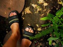 Pieds marchant sur la tuile ronde de ciment, sol noir, jardin de fougère Images stock