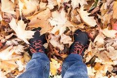 Pieds masculins se tenant sur les feuilles jaunes d'érable Photographie stock