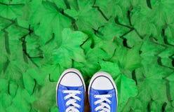 Pieds sur des feuilles de ressort Photos stock