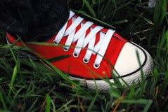 Pieds sur l'herbe Photographie stock