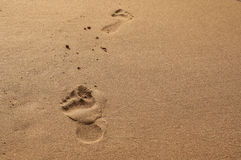 Pieds sur la plage Photographie stock