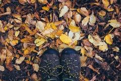 Pieds sur les feuilles d'automne jaunes Images stock