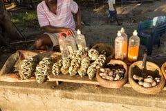 Piekła dla jedzenia przy rynkiem morzem, Madagascar fotografia royalty free