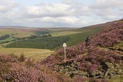 Piek het Districtsplatteland van Engeland Royalty-vrije Stock Foto