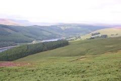 Piek het Districtsplatteland van Engeland Royalty-vrije Stock Foto's