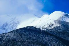 Piek, mooie natuurlijke de winterachtergrond van de bergsneeuw Ijs hoogste o Stock Fotografie