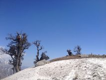 Piek van een berg in Himachal Pradesh, India Stock Fotografie