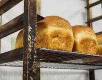 Piekarnia świeży chleb Zdjęcie Royalty Free