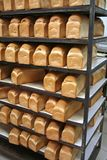 piekarnia chleb. Obraz Royalty Free