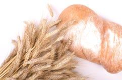 Piekarnia chleb z snopem Pszeniczni ucho na bielu Fotografia Royalty Free