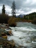 piekarniana creek Zdjęcia Stock