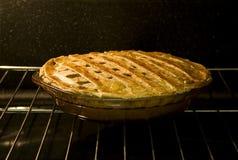 piekarnika kulebiak Zdjęcia Stock