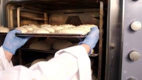 Piekarz stawia chleb w piekarniku zbiory wideo