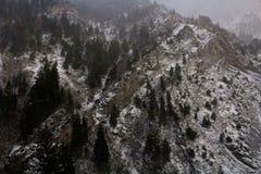 Pieken langs de sleep van de rotscanion in Provo, Utah stock foto
