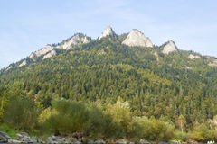 Pieken in Tatras, Slowakije Stock Afbeeldingen