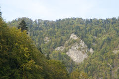 Pieken in Tatras, Slowakije Royalty-vrije Stock Foto's