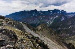 Pieken van de bergen in de zomer Royalty-vrije Stock Foto's
