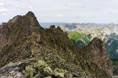 Pieken van de bergen in de zomer Stock Foto's