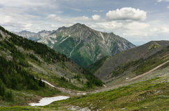 Pieken van de bergen in de zomer Stock Fotografie