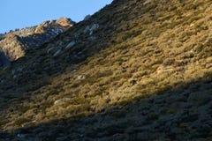 Pieken van Sherwin Range boven Convict Meer, Sierra Nevada, Californië Royalty-vrije Stock Fotografie