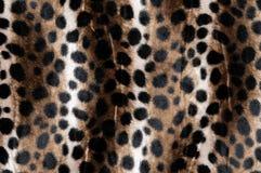 Piel animal (primer) Imagen de archivo