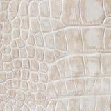 Piel beige de un reptil, cocodrilo Texturice el primer del cuero auténtico, tonos del coñac, tendencia de la moda Foto de archivo