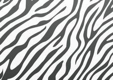 Piel de la cebra del vector Imagenes de archivo