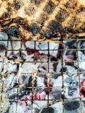 Piel de la parrilla de los pescados en el carbón de leña caliente hasta negro y chamuscado fotos de archivo libres de regalías