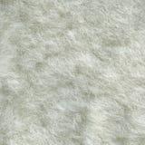 Piel de las ovejas Fotografía de archivo libre de regalías
