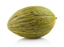 Piel de sapo green melon isolated white in studio Royalty Free Stock Images