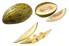 Piel de Sapo Melon Royalty Free Stock Photo
