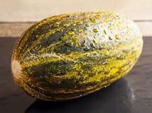 Piel de Sapo Melon Royalty Free Stock Photos