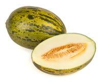 Piel de sapo melon Stock Photography