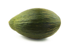 Piel de Sapo Melone lizenzfreies stockbild