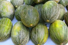 Piel de Sapo Santa Claus melon stacked  Stock Photography
