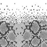Piel de serpiente ilustración del vector