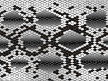 Piel de serpiente stock de ilustración