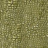 Piel del cocodrilo Fotografía de archivo libre de regalías