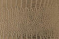 Piel del cocodrilo Imagen de archivo libre de regalías