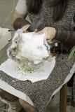 Piel del conejo de la peladura Imagen de archivo libre de regalías