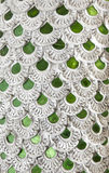 Piel del dragón adornada con la teja verde del espejo Fotografía de archivo libre de regalías