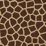 Piel del fondo de la textura de la jirafa Imágenes de archivo libres de regalías