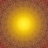 Piel del guepardo Imagen de archivo libre de regalías