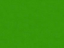 Piel del lagarto imágenes de archivo libres de regalías