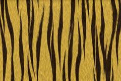 Piel del tigre Imagen de archivo libre de regalías