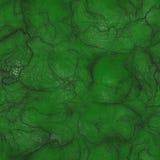 Piel extranjera verde Fotos de archivo