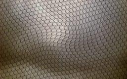 Piel gris del lagarto Imagen de archivo libre de regalías