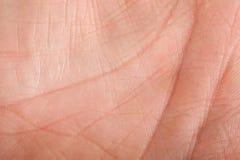 Piel humana Foto de archivo libre de regalías